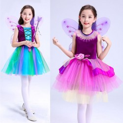 IN1033 - Rainbow Fairy